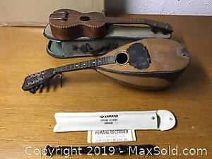 Musical Instruments, Mandolin, ukulele, Recorder