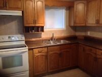 Newly renovated one bedroom house in Dauphin Mb
