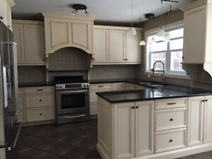 Full wood kitchen cabinets and quartz countertops