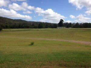 Bales for livestock, horses or mulch. 100 acres. FREE- you bale. Telegraph Point Port Macquarie City Preview