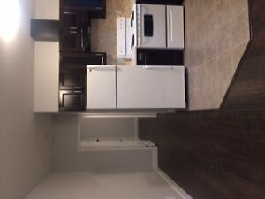 Brand new 1 bedroom suite for rent $950 - July 1!
