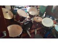 proffesion premier drum set