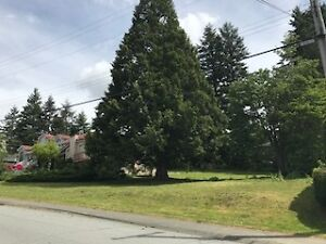 Half acre building lot with view North Delta