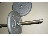 "Weight discs and 6"" barbell bar and free acrylic discs"