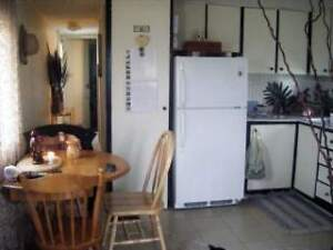 Furnished mobile- cat  friendly