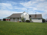 LARGE FARM HOUSE WITH POOL FOR SALE