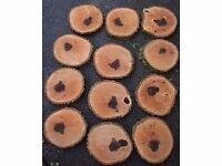 Rustic Log Slices for Wooden Wedding Cake Stand / Cup Cakes, various sizes