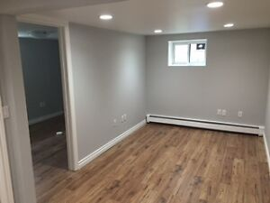 $1650 / 2br - Queen West Parkdale Lower Level Apartment
