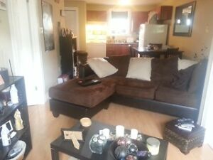 Beautiful One Bedroom Apartment for Rent now in Massey Drive