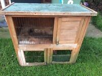 Two tier hutch , possible free delivery , rabbit , Guinea pigs