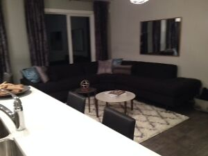 You and the Kids can enjoy a Developped basement  in Blackstone Strathcona County Edmonton Area image 5