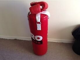 Punchbag - with training gloves