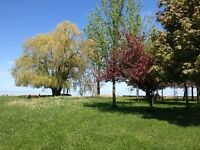 959 LAKESHORE PARK  VACANT LAND ON WATER FOR SALE