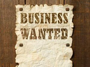 WANTED – Business to buy/partner