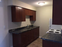 Extensively Renovated 3 bed, 2 bath Townhouse by University