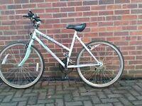 Ladies Apollo outback bike