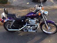 Harley Davidson Sportster XL 1200 C Custom Sport
