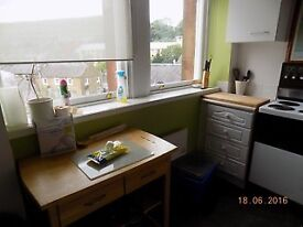 2 Rooms in student town flat share