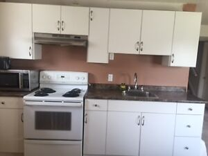 Walkout 1 Bedroom Furnished room for Rent Asian Female only