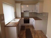 Beautifully finished 2 bed house to let on Park Avenue, Washington- great location