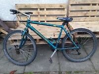 gents cannondale 26 inch mountain bike
