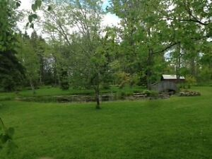 VIEW OF NAPANEE RIVER   - NEW PRICE