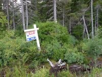 Vacant Lot - Great Residential Area