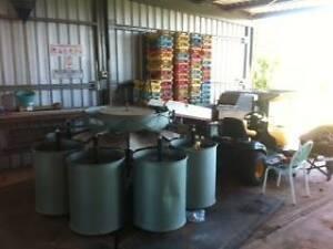 Mango Grading line Kununurra East Kimberley Area Preview