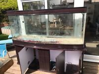 6foot bow front aquarium. With base unit and hood