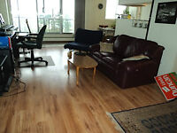 Upgraded 1 Bedroom Apartment near University and Downtown