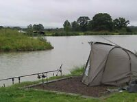 carp set up onley used once so much end takle and full set up BARGIN