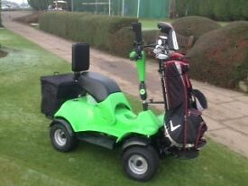 Single Seat Golf Buggy with 3 x 80Ah Batteries, Charger, Bag Holder, Back Rest and Mud Guargds
