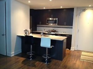Contemporary 2 BDR Condo at Dow's Lake - $1,795/month