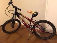 Kids Raleigh Hot Rod bike 20 in wheels