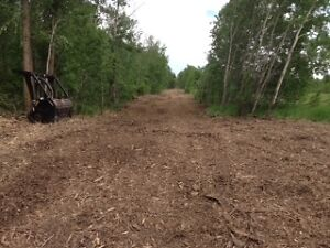 Mulching/Brush clearing/Fencing Strathcona County Edmonton Area image 2