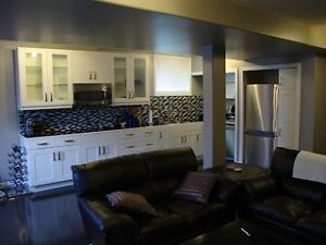 Gorgeous ALL INCLUSIVE 1 Bedroom in Kingston's west end-IR ready
