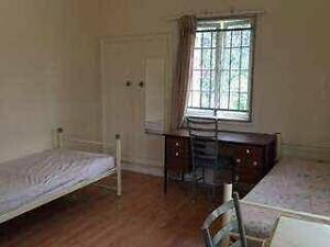 Shared Room- Single Bed with 1 Female, Shared bathroom St Lucia Brisbane South West Preview