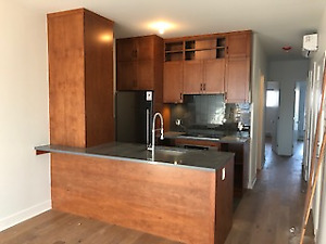 Superb condo near Atwater and Canal Lachine
