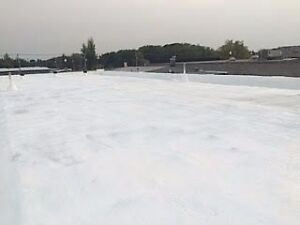 Best Solution for Leaky Commercial Roofs   !!!!