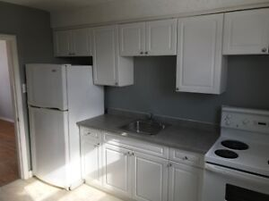 Bright 2 Bedroom Apartment in Huron Heights