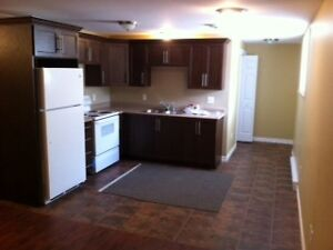 Southlands 2 bedroom apartment