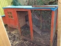 Chicken coop/rabbit hutch and run