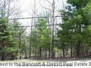 Residental Building lot in the town of Bancroft