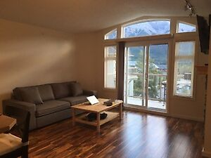 Beautiful, Sunny 2 bedroom, 2 bathroom Condo in Canmore