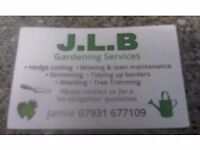 Gardener looking for any kind of work.