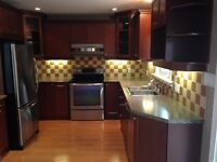 Complete kitchen cabinet set beautiful condition