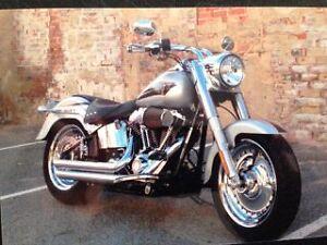 2009 Harley Davidson Fatboy FLSTF 1584cc only done 5600 like new Jandakot Cockburn Area Preview