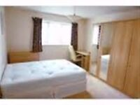 Spacious large double bedroom, walking distance from Surbiton Station ,