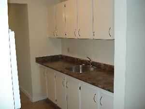 ALL UTILITIES INCLUDED - Contemporary 2 Bedroom, 1 month FREE