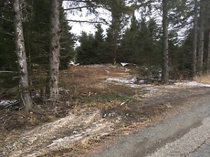 Building Lot on Townline Road ready to go!